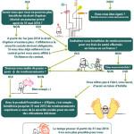 Droit d'option : faites le bon choix en infographie