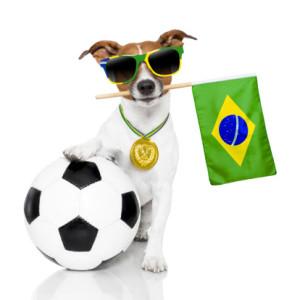 Combien de vos voisins de bureau sont des fans de foot ?