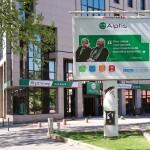 Alptis : Un attachement historique aux travailleurs non salariés